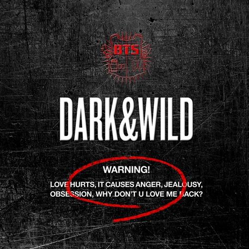 방탄소년단 (BTS) - 정규 1집 Dark & Wild : Danger 호르몬전쟁 힙합성애자 이불킥