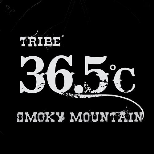 36.5˚C (최민수밴드) - 1집 Tribe Rocksan