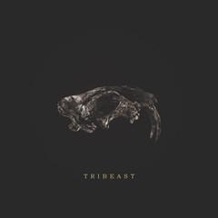 트라이비스트 (던말릭 X 키마)  (Tribeast) - Tribeast