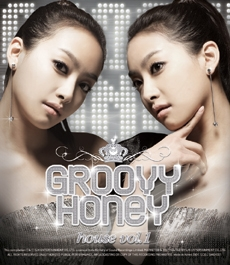 Groovy Honey (그루비허니) house vol.1