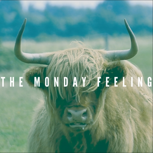 The Monday Feeling (더 먼데이 필링) - Absolutely Clearly On Fire